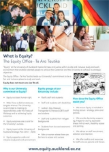"Thumnail of our ""What is Equity?"" A2 poster"