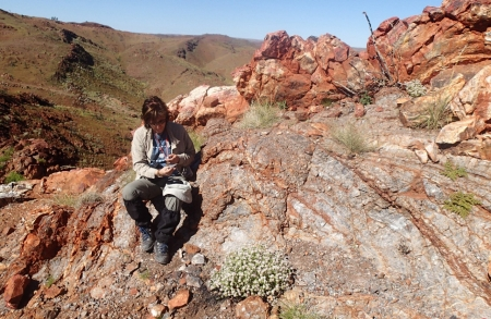 Kathy Campbell on the side of a rock formation, looking at a rock sample.