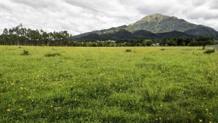 Farmland in rural New Zealand